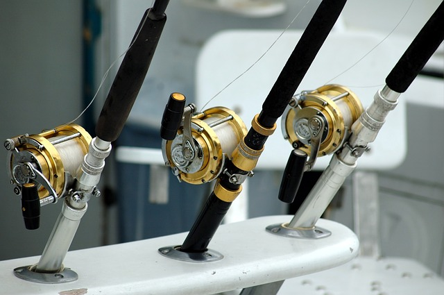rybaření hrou