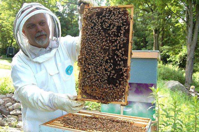 včelař u úlu.jpg
